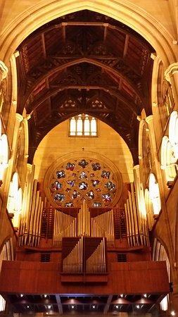 悉尼圣母主教座堂照片