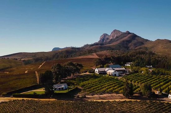 Half-Day Stellenbosch Winelands Tour ...