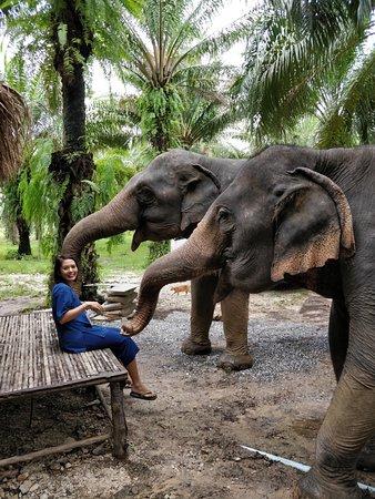 Сай-Тай, Таиланд: oh, Hello!