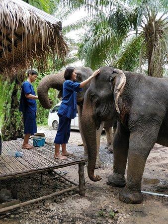 Сай-Тай, Таиланд: connecting
