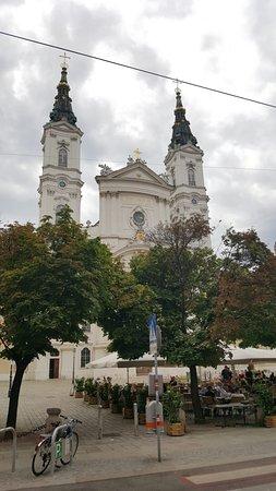 Church of the Piarist Order (Piaristenkirche): Piaristenkirche