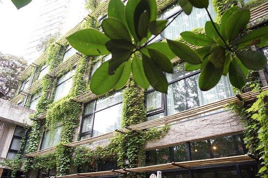 URBN Restaurant: Courtyard