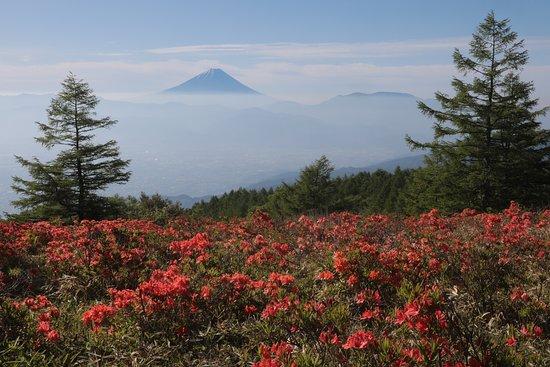 Mt. Amari