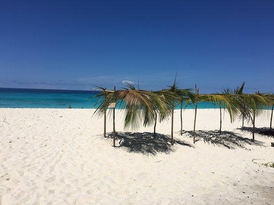 Secret Seychelles : Seychelles