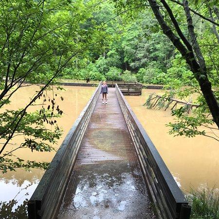 Unicoi State Park ภาพถ่าย