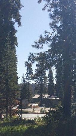 Montecito Sequoia Lodge & Summer Family Camp照片