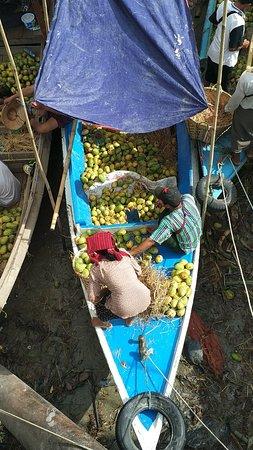 Uncharted Horizons Myanmar照片