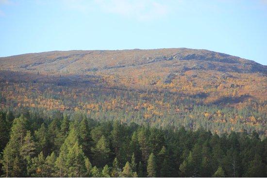 Paltto Elämysretket: National park