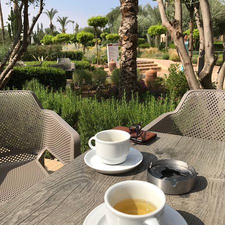 Iberostar Club Palmeraie Marrakech : This fantastic hotel helped my family and I have the best holiday ever !
