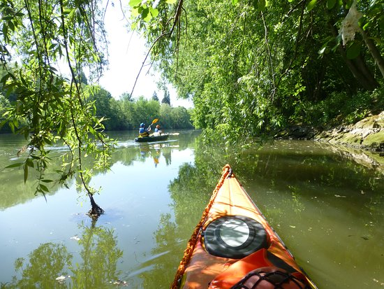Parmain, France: L'Oise  : Un corridor de natre !