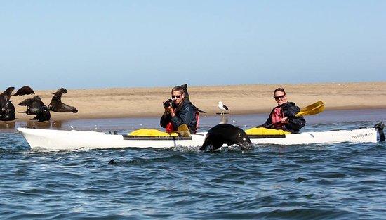 Namibia Kayak Tours: Clear Skies make for wonderful photos