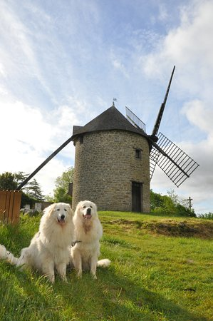 Mont-Dol, France: le moulin