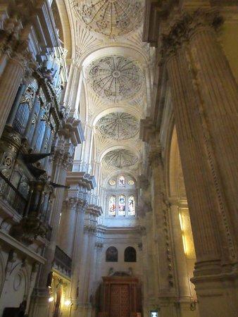 马拉加大教堂照片