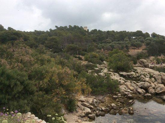 Sa Dragonera National Park: Aspect général