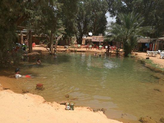 Tataouine, Tunisia: L'oasis