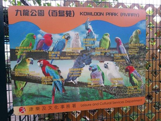 สวนเกาลูน: Aviary
