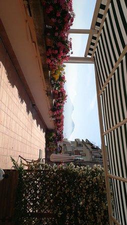 L'Agrumeto Bed & Breakfast : Discovering Naples in front of Vesuvio