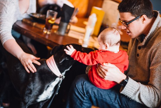 The Golf Tavern : Dog Friendly and Child Friendly
