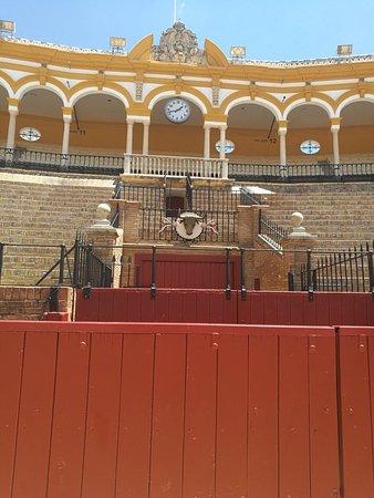 Plaza de Toros de la Maestranza: Toros