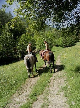 Chialamberto, Italy: i nostri cavalli