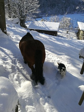 Chialamberto, Italy: nella neve