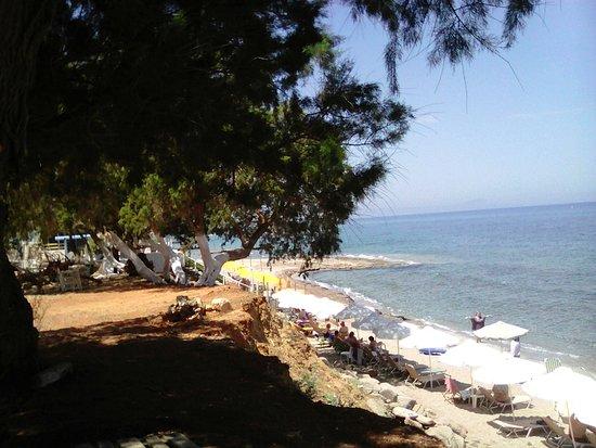Amnissos Residence: Вид на пляж с высокого берега