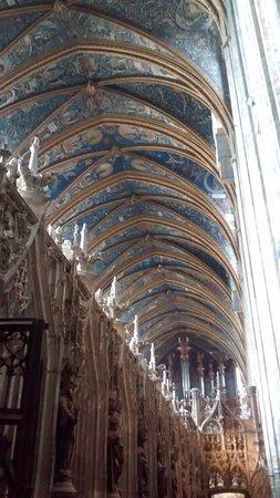Cathedrale Sainte-Cecile: Bóveda desde el coro