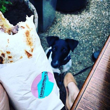 Chihuahua's: Modern Mexican Street Food: Burrito