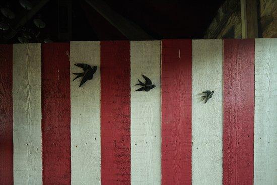 La Rosa Campsite: Swallow Barn