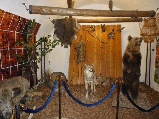 Castle of Diósgyőr: Room of Hunting