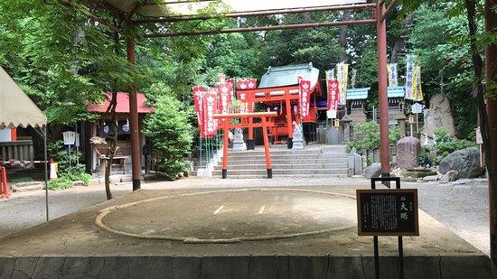 Tanashi Shrine: 境内の本土俵 (2018/05/26)