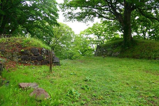 Kamegajo Park: 随所に石垣も見れます