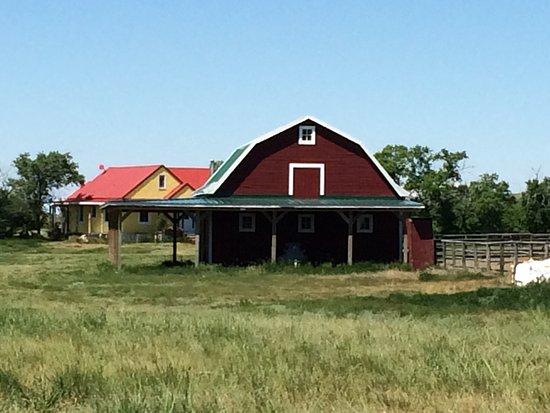 Kyle, Καναδάς: Im Hintergrund die Ranch des Gastgebers