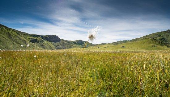 Fideris, Schweiz: Traumhafte Landschaften erwarten Sie in den Heubergen. Waren Sie schon einmal am Clunersee?
