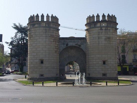 puerta de palmas