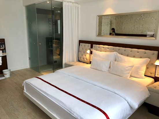 Ruby Lissi Hotel Vienna : View of room