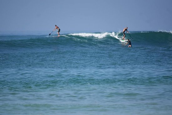 SUPer Juice Bar & Paddleboard Hire : Surf Tour - South Beach