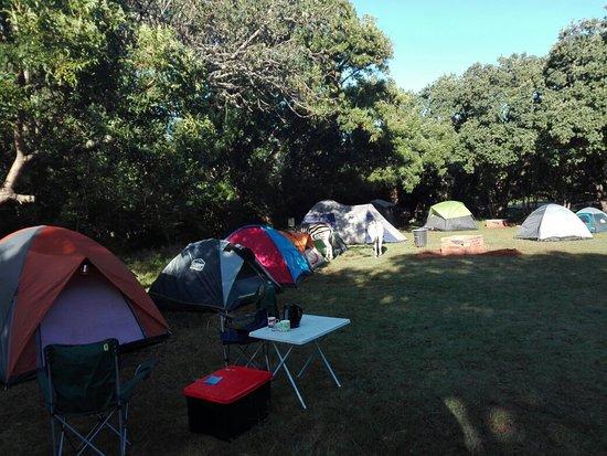 Mtunzini, Νότια Αφρική: IMG_20180603_083052_large.jpg