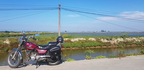 Viet Nam Motor Trail: We travel past the rice fields and fish farms.