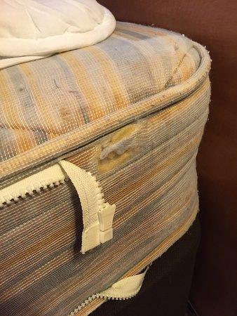 Holiday Inn Express Shrewsbury: Disgusting mattress