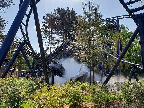 Le Nouveau Jardin D Acclimatation Picture Of Jardin D