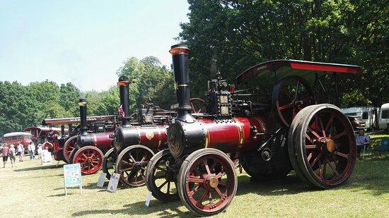 Strumpshaw Steam Museum Photo
