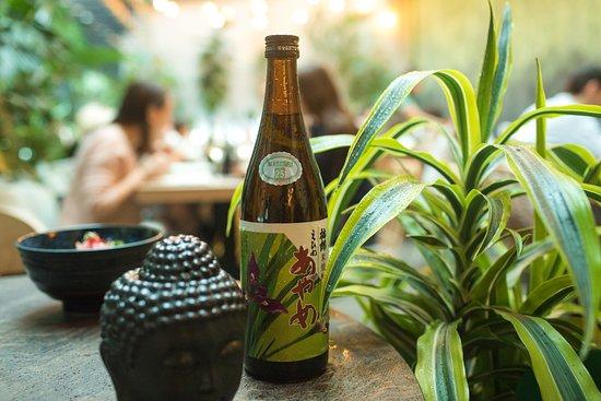 Jungle: Напитки
