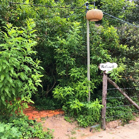 Phu Quoc Countryside Foto
