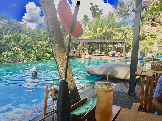 Jungle Fish Pool Bar ภาพถ่าย