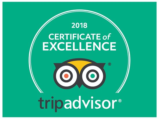 Tako Boy: 2018 Certificate of Excellence