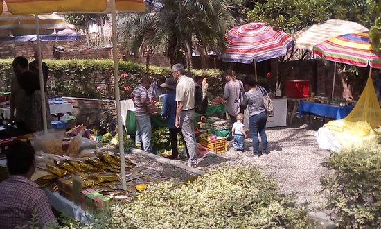 The Yellow House: Marché bio du dimanche dans le jardin de l'hôtel