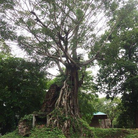 Kampong Thom Province, Kambodża: photo1.jpg