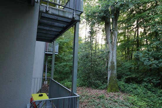 V-Hotel: Ausblick vom Hotelzimmer (Gartenblick)