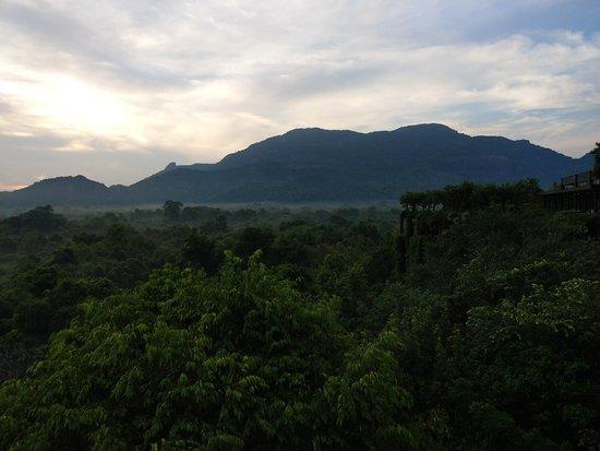 Heritance Kandalama: 朝焼けの中の建物